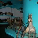 museo del giocattolo 04